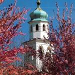 Sedico_campanile-crop